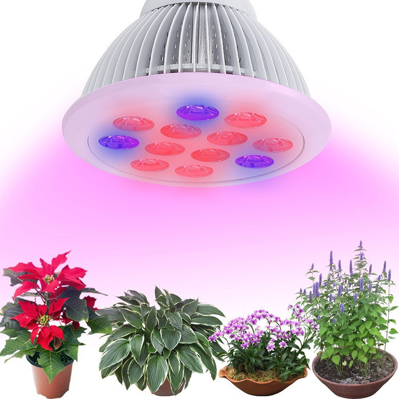 36W Led Plant Grow ing light Lamp E27 E26 SMD Growing Lights Hydroponics for Indoor Greenhouse flower vegetable lighting