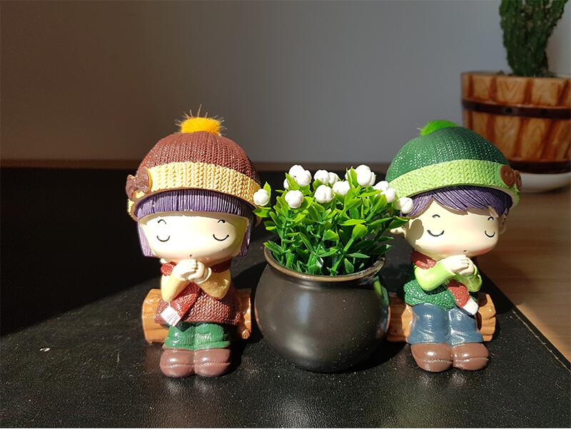 Wishing couple home decoration (3)