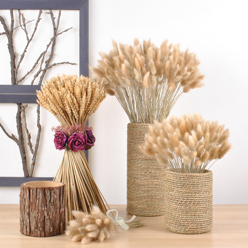 Natural plants dried flowers really flowers home decoration flower arranging eternal life Gem grass
