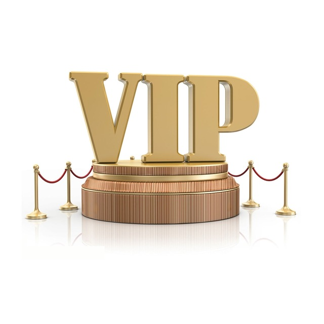 The VIP Link for dropshippingThe VIP Link for dropshipping