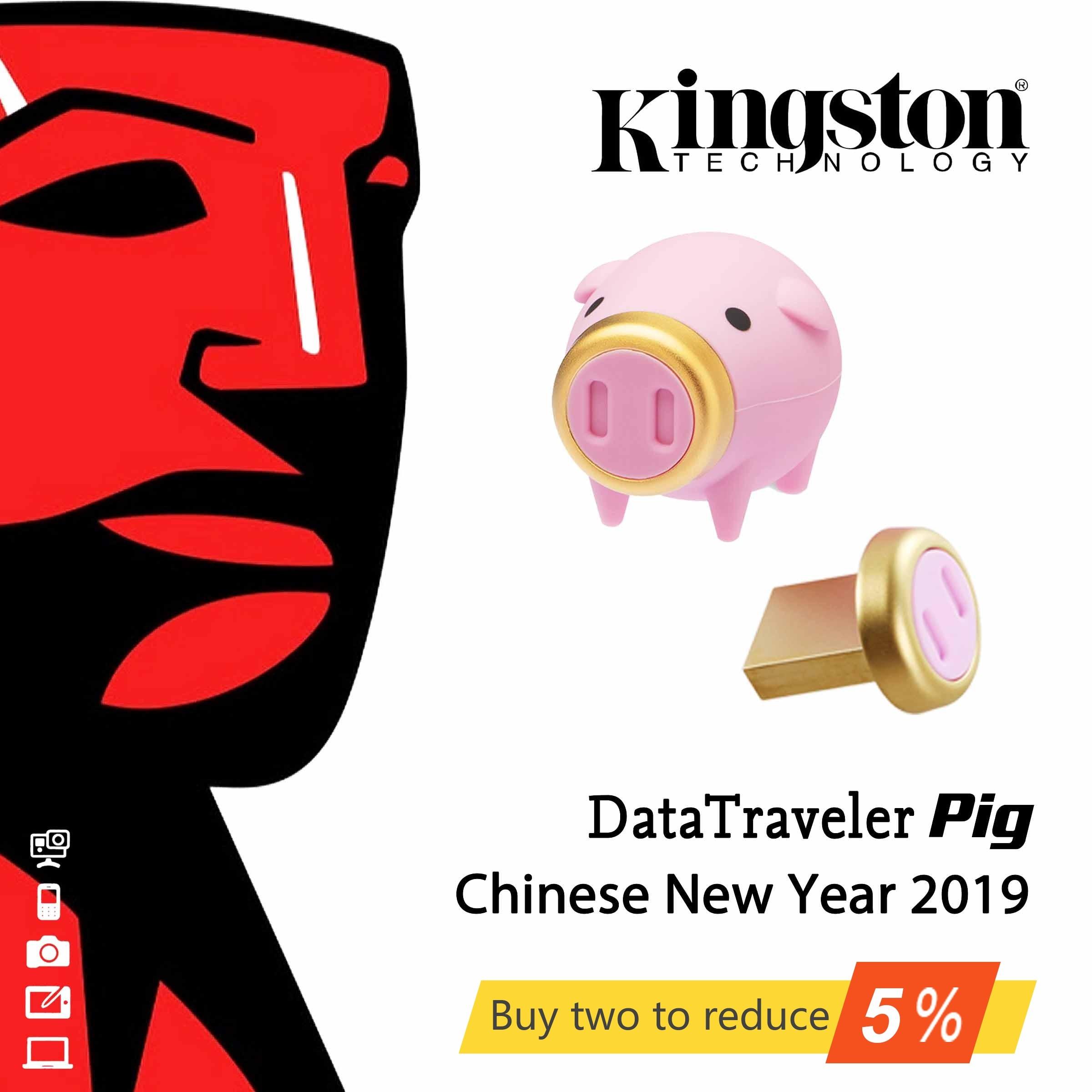 Original Kingston DataTraveler Pig Chinese New Year 2019 USB3.1 USB Drives DTCNY19 Zodiac USB U Disk 64GB Flash Drives 64 GB