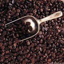 Жареные вьетнам зернах выпечки оригинальный уголь питание кофе похудения зеленый г