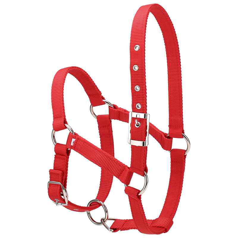 6Mm Thickening Riding Durable Horse Head Collar Hanging Neck Horse Reins Horse Riding Equipment Hanging Neck Horse Accessories