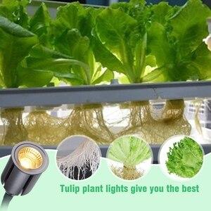 Image 5 - 실내 식물에 대 한 조명 성장 타이머와 전체 스펙트럼 75 w sunlike 식물 빛 3/6/12/24 h 타이머 5 디 밍 led 햇빛 gr