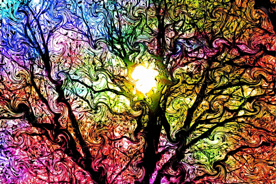 Fantasy tree psychedelic colorful Art Wall poster silk print for home Decor(China)