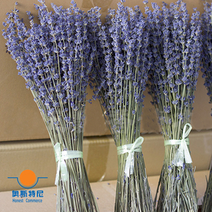 Image 2 - 100g dried natural flower bouquets dried natural Lavender flower bouquet&lavender flower Bunches