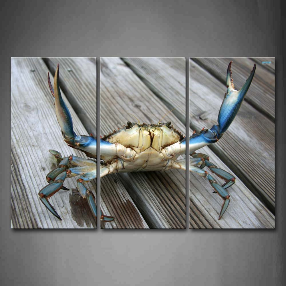 Blue crab wall decor instadecor blue crab wall decor amipublicfo Images
