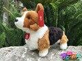 25CM Simulation Welsh Corgi Pembroke Plush Toys Corgis Stuffed Animals Toy Yellow Dog Plush Dolls Free Shipping