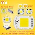 COB Лампа 5 Вт 20 Вт 30 Вт 50 Вт СВЕТОДИОДНЫЙ Чип 230 В 220 В Вход IP65 Смарт IC встроенный Драйвер для прожектор нет необходимости драйвер для DIY