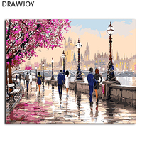 Frameless Picture Painting By Numbers Home Decor DIY Oil Painting On Canvas Home Decoration For Living