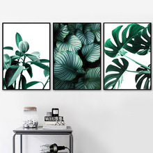 Succulents Monstera Leaves Wall Art Canvas Painting Green Plant Nordic Posters And Prints Pictures For Living Decor