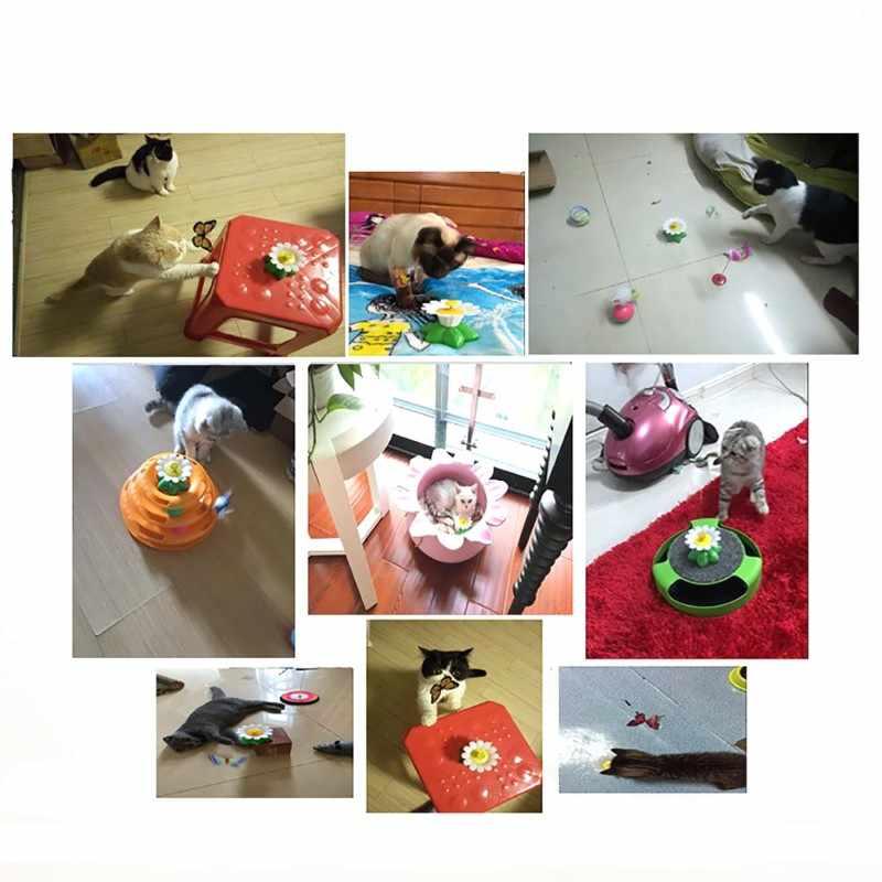 Gran oferta de asiento de pájaro para mascota con diseño de mariposa, perro gato gracioso, juguete para rascar para gatos perros mascotas, juguete de plástico gato de entrenamiento inteligente