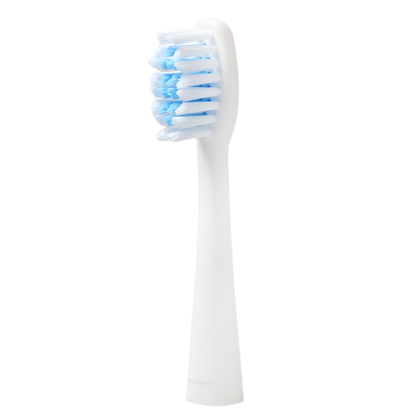 все цены на 1 pair Seago Sonic toothbrush heads Applicable models SG-906 SG-612 SG-915 онлайн