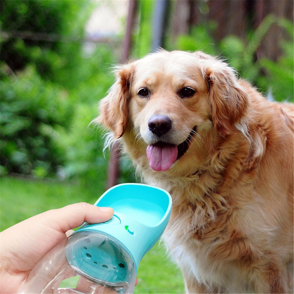 Portable Dog Cat Portable Carbon Filter Water Bottle: 350ml Portable Pet Water Bottle Leakproof Dog Cat Feeding