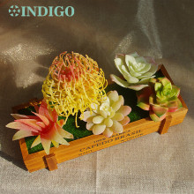 INDIGO- Yellow Artificial Succulent Plant (5pcs +1 Wood Tray)/Set Flower Bonsai Table Decoration Free Shipping