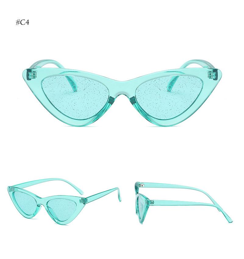 cat eye sunglasses (17)