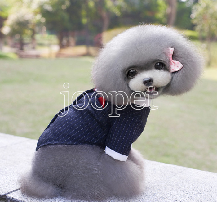 Aliexpress.com : Buy XS M L XL Pet dog wedding dress boy pet dog ...