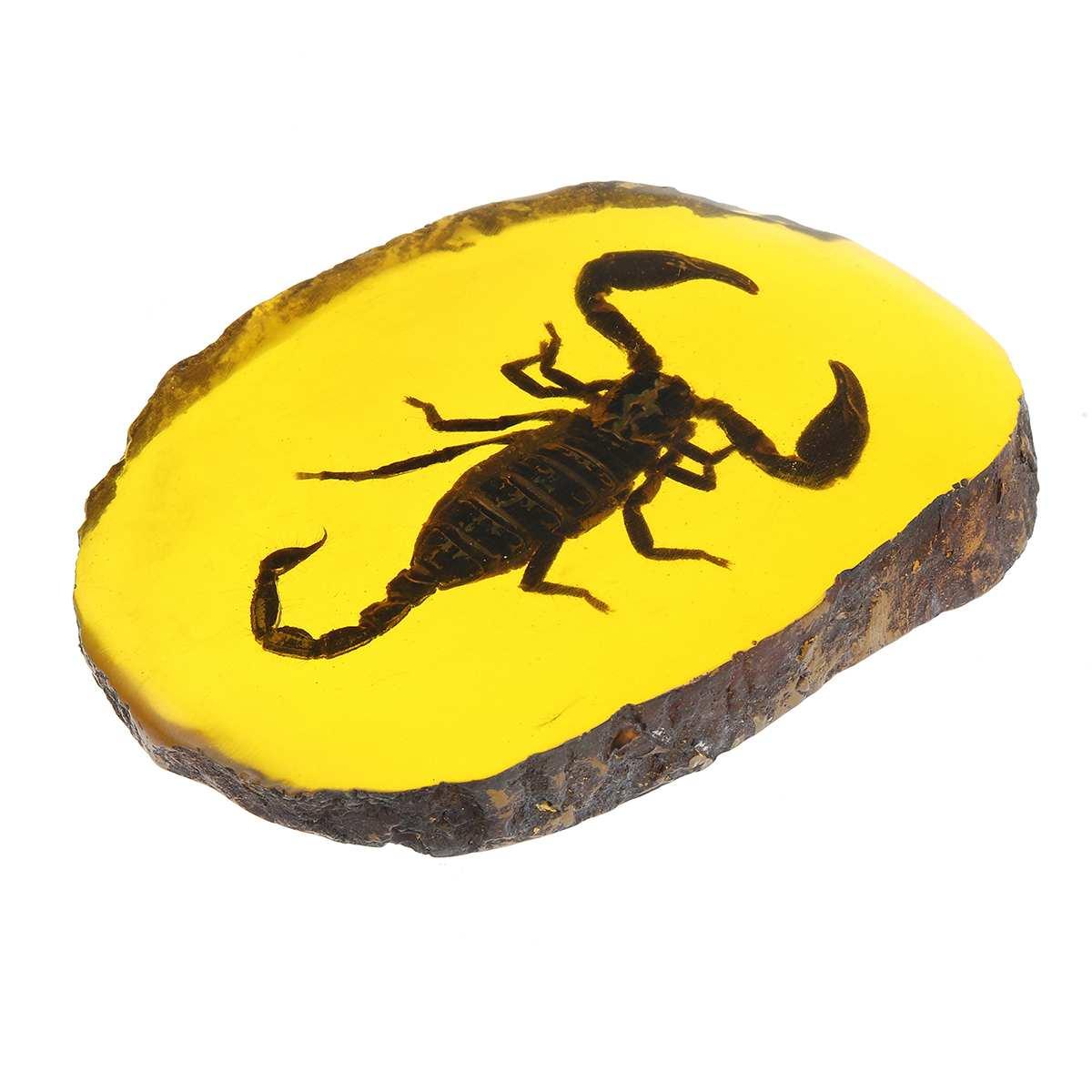 Натуральный Янтарный Стрекоза Скорпион бабочка геккон насекомое ручной полировки украшения DIY Орнамент Ремесло подарок для дома