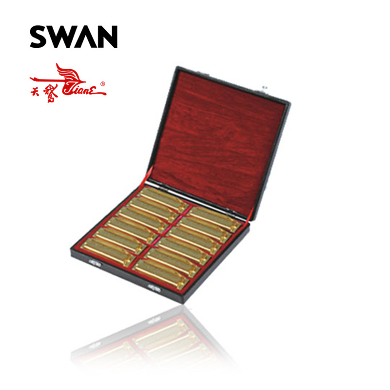 Swan SW1020-12TJ Gold Color Harmonicas Set In Gift Box 10 Holes 20 Tones 12 Keys Diatonic Harps Woodwind Musical Instruments