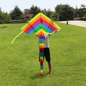 Liplasting Outdoor Colorful Tail Flying Kite Kid's Toy