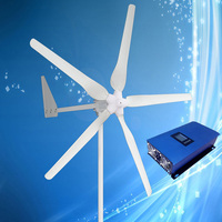 1000W 48V Wind Generator, Three or Five Blades Optional 1KW Wind Turbine with Tail Turned Brake + 2KW 48V Grid Tie Wind Inverter