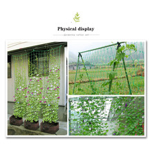 Garden Green Nylon Trellis Netting Support Climbing Bean Plant Nets Grow Fence for Cucumber Towel Gourd