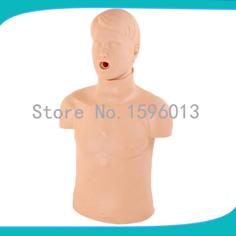Half Body CPR Training Manikin,CPR Manikin, First aid model whole body basic cpr manikin style 200 male female nursing manikin