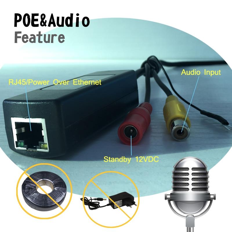 HJT 5.0MP POE Audio Dome IP Cameras led light H.264/H.265 Micro Array 18 LED Night IR-Cut CCTV ONVIF RTSP FTP Indoor Secur