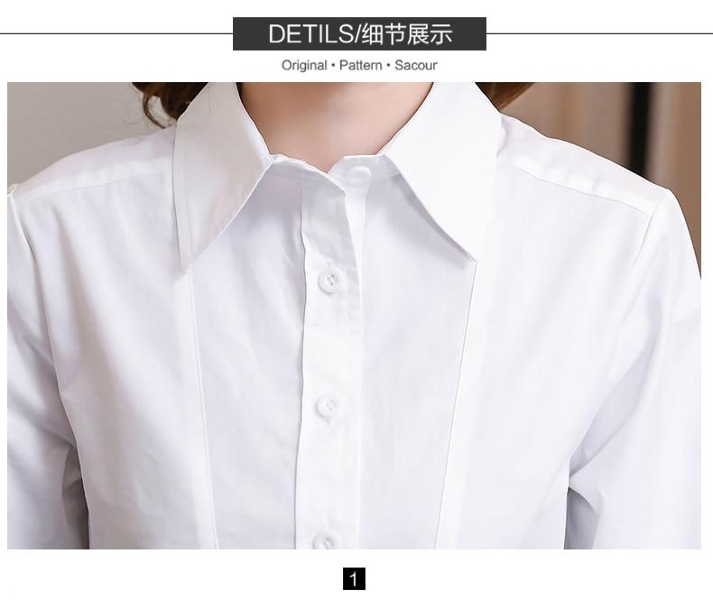 Blusas & Camisas