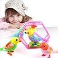 20 Песни Звук Пения Птиц Животные Петь Соло умный Свисток Музыкальные Игрушки Digibirds Музыка Птица для Детей Дети Электрические Игрушки