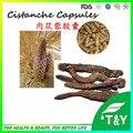 Venda quente! REALCE MASCULINO NATURAL ERVAS Cistanche Deserticola Extrato cápsulas de 500 mg * 300 pcs