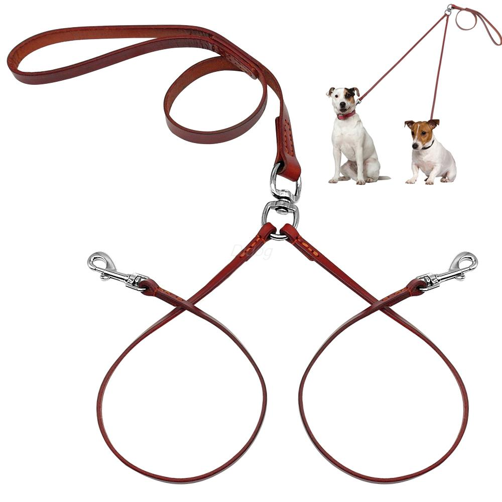 Double Leash For Small Dogs