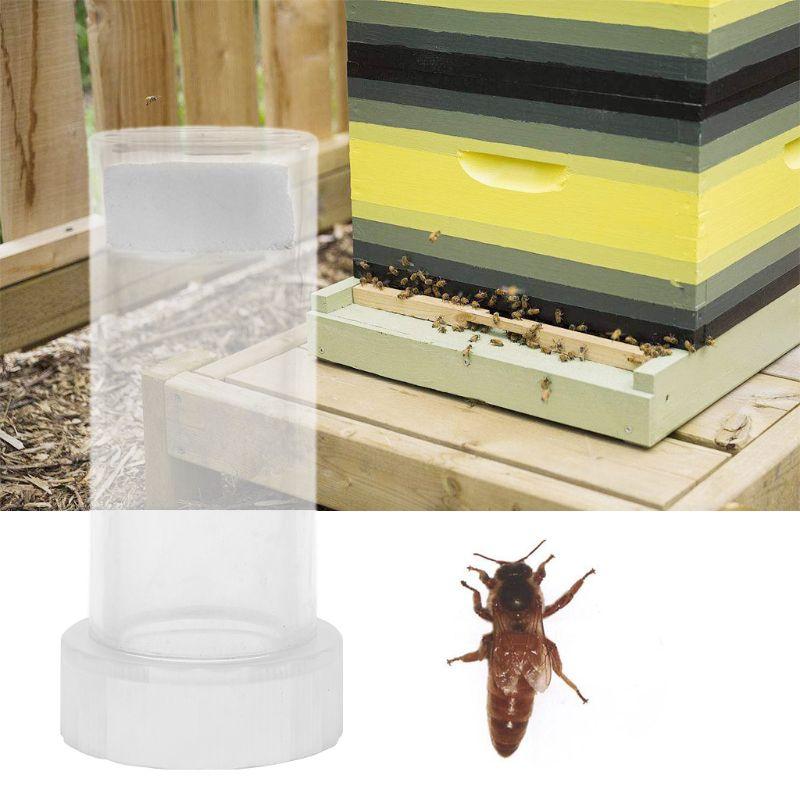 Beekeeper Bee Queen Marking Cage Marker Bottle Kits Plunger Beekeeping Tools Set Equipment-in Beekeeping Tools from Home & Garden