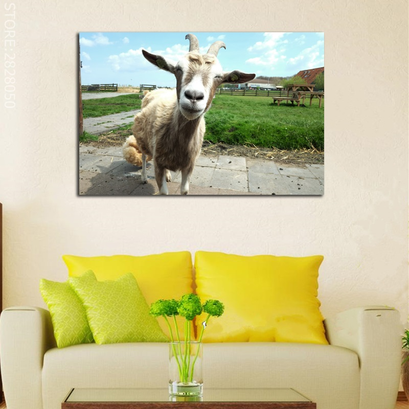 Modular Picture Unframed Cute Goat Animal Canvas Wall Art Picture HD ...