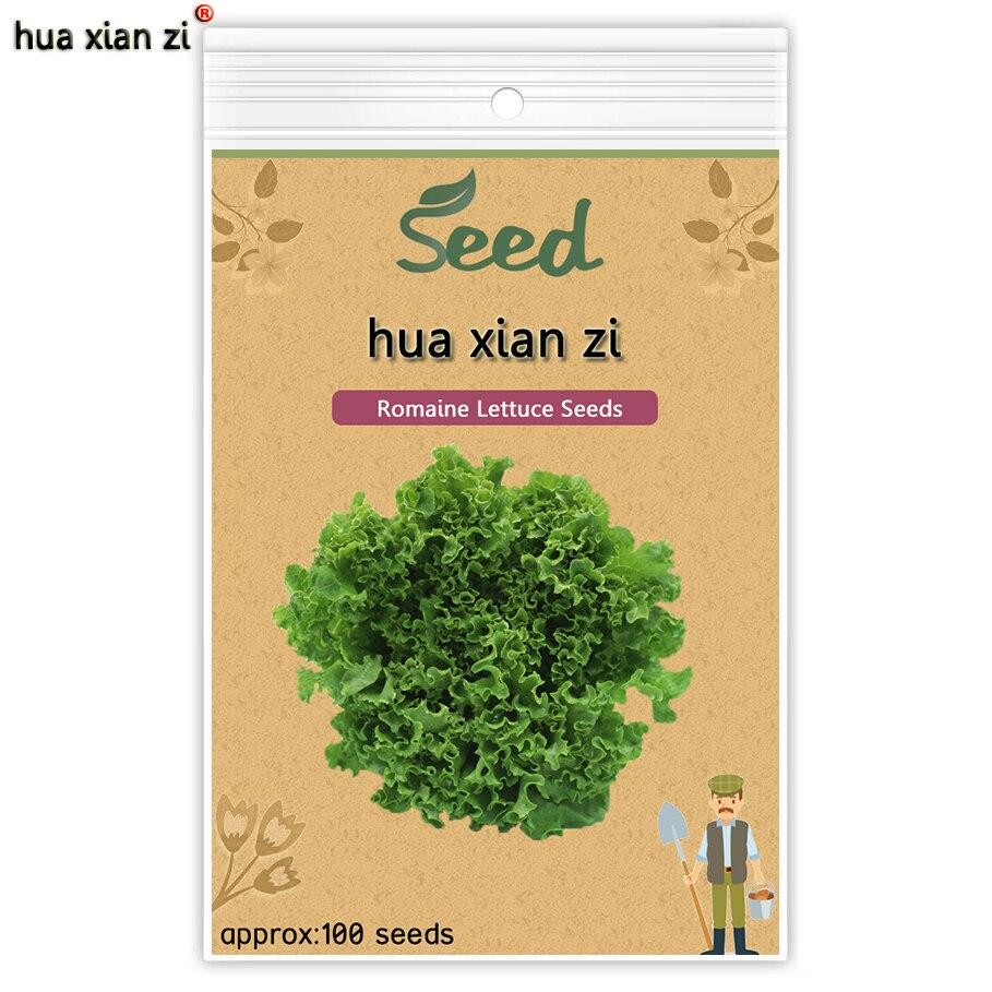 Салат Вкусный Питательные Овощи Семена DIY Дома Сад Семена Овощей 100 семена/мешок