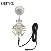 Professional BM 8000 Sound Studio Recording Condenser Microphone with 3.5mm Plug Stand Holder for Personal Audio Recording KTV