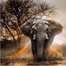 animal print draw diamond drawing 5D DIY Diamond Drawing Painting Elephant Animal Diamond Mosaic Cross Stitch  Drill Diamond Embroidery Decoration Drawing