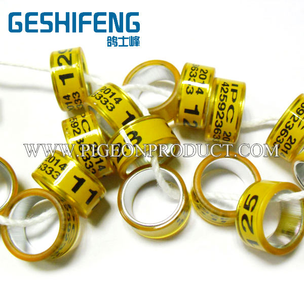 13mm 11mm free color custom with own information free size for pigeon fanciers pigeon ring
