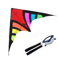 High quality outdoor fun sports 2.8 m resistant nylon Power Stunt Kite Carbon rod Factory Outlet Entry Level Good Flying