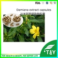 GMP factory supply Damiana Leaf Extract capsules with best price 500mg*100pcs/Bag