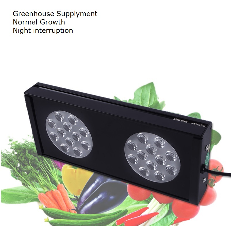 90W High Penetration LED Grow Lights with Lens for Greenhouse Plant Growers 90w led round grow lights light ratio 5 2 1 1 with the mixture of red blue orange white lights for indoor grow box