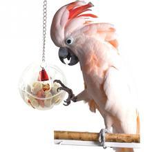 Попугаи мяч игрушки еда кормушка подвесная клетка Кормление игрушка птицы колокольчик кормушка цепь для лакомства товары для птиц