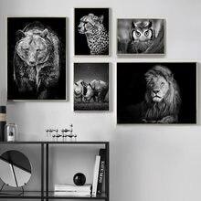 Macan Tutul Hitam Lukisan Beli Murah Macan Tutul Hitam Lukisan Lots