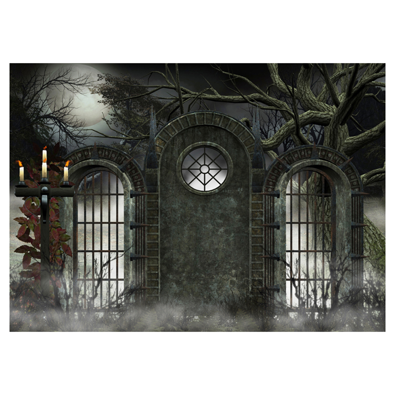 Vinyl Photography Background Photo Backdrops Magic Theme Photography Studio background Horror Night Fog Foggy Grids Iron Gate, ...