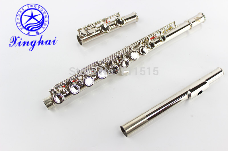 Chinese16 holes closed plus the E key metal flute musical instrument nickel plated pan flute piccolo flute wood wholesale 17 e key trepanned dual flute musical instrument