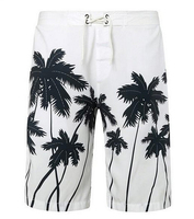 Mens Hawaiian Shorts Quick Dry 2015 New Fashion Men Beach Shorts Surf Shorts Free Shipping
