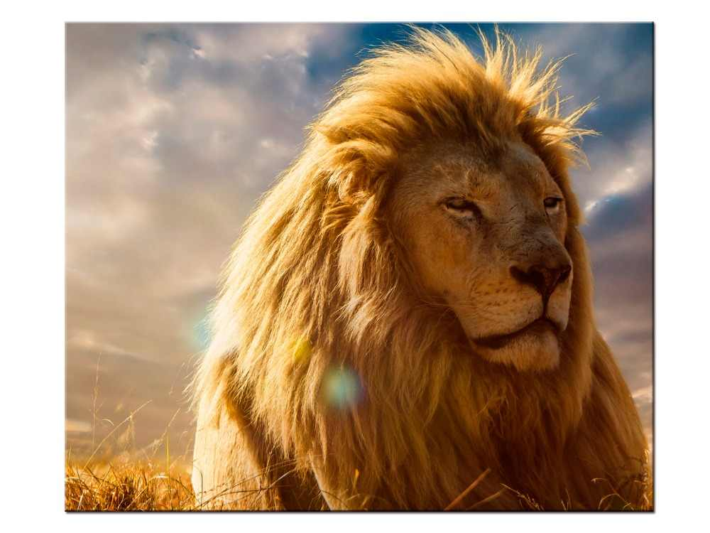 1 pieces / set HD Printed Animals Lion Group Painting Canvas Print room decor print poster picture canvas