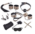10-in-1 sets Alternative toys adult abuse sexy toys free shipping