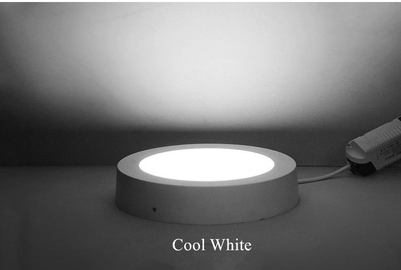 led downlight (19)