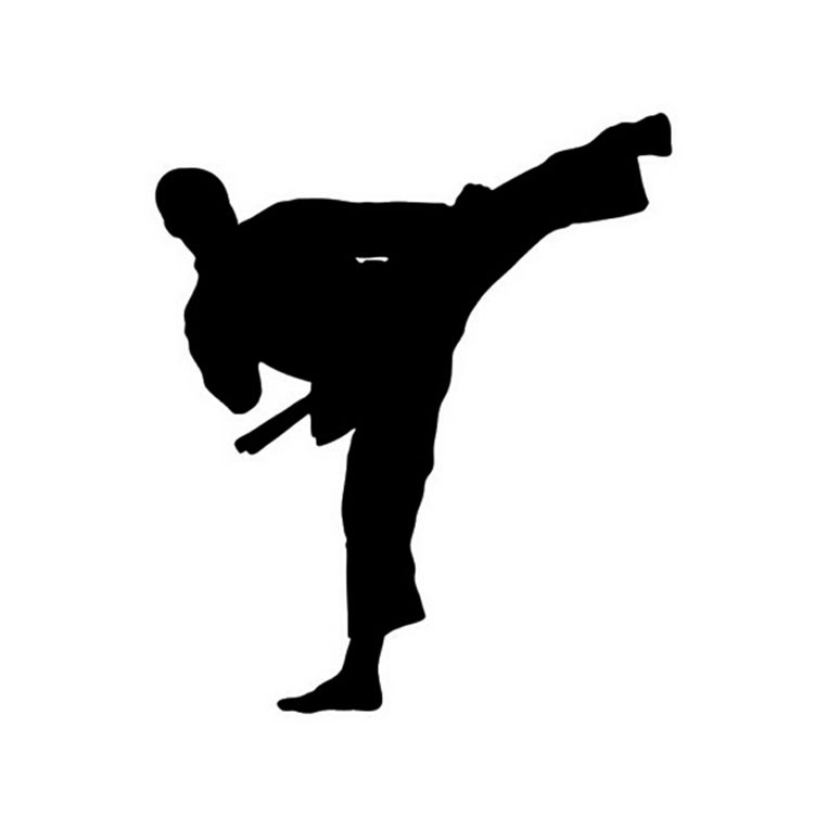 12*14CM Kung Fu Taekwondo Car Sticker Decal The Window Decoration Karate Car Stickers And Decals